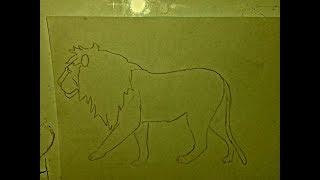 رسم اسد يمشي ببط بكل سهولة