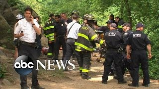 NYC Central Park Explosion Injures Man