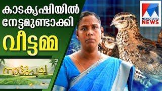 Successful kada farming by housewife   Nattupacha    Manorama News