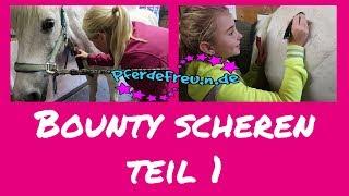 Pony scheren [ Pferde Freu.n.de ] Bounty scheren Teil 1