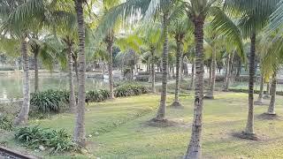 অপূর্ব সুন্দর গ্রাম বাংলার একটি দৃশ্য