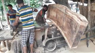 Very Huge!! But Expert Workers Never Feel Fear for Cutting Huge Tree/ Heavy Wood Pcs Cutting by Expt