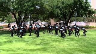 Step Up Revolution (2012 Movie) - Flash Mob Contest (Houston)