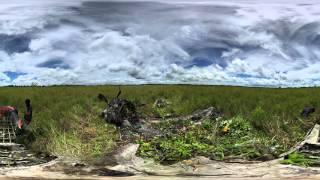 360 Degree Video - P-47D Wreck, East Sepik Province, Papua New Guinea