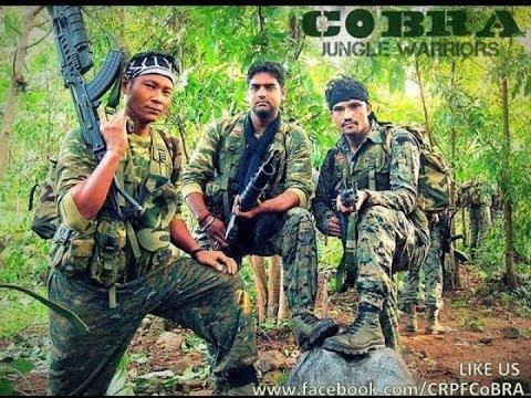Xxx Mp4 Pakistan Ssg Commandos Training Best Video In 2018🔫 3gp Sex