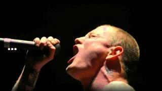 Stone Sour -  The Day I Let Go (Lyrics)