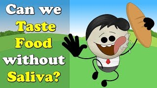 Can we Taste Food without Saliva? | #aumsum