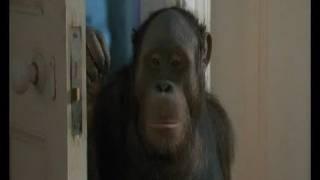 Elizabeth Shue and the monkey