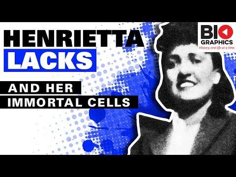 Xxx Mp4 Henrietta Lacks The Immortal Woman 3gp Sex