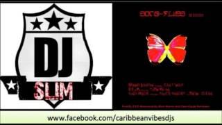 Skinny Banton | Can't Wait | Soca Flies Riddim | Grenada  Soca 2013