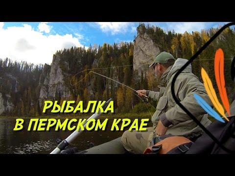 штрафы пермского края при ловли рыбы