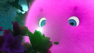 Sunny Bunnies | Big Boo and the Fireflies | COMPILATION | Cartoons for Children | WildBrain