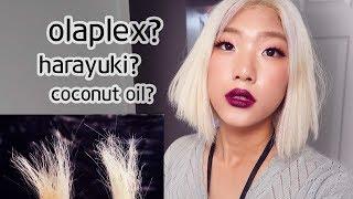 DEAD HAIR EXPERIMENT Olaplex VS Harayuki VS DIY Coconut Oil - WHICH IS THE BEST!!
