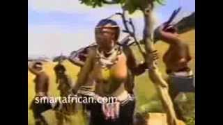 Party Time, by  Queen of Africa Brende Fassie