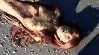 حورية البحر حقيقة وليس خيال