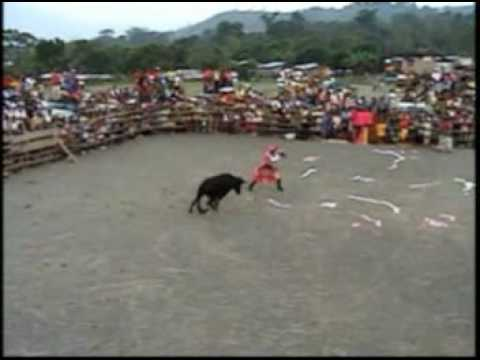 Corrida de Toros En Palmapampa Ayacucho