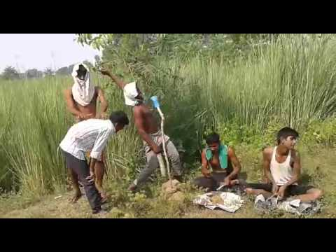 Bihar chaugai