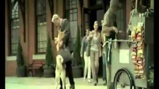 Siempre a tu lado Hachiko (Trailer español latino)