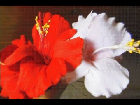 How to make paper flowers - Hibiscus (Flower # 3)
