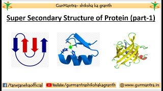SUPER SECONDARY STRUCTURE OF PROTEIN | MOTIF | DOMAIN | STRUCTURAL LEVELS OF PROTEIN| PART-1