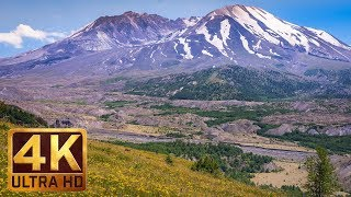 4K Nature Scene | Mt. St. Helens - View from Hummocks Trail - Trailer