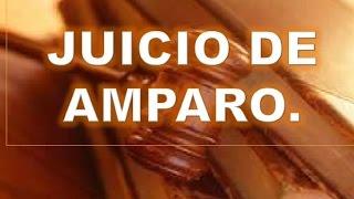 Nociones básicas sobre el juicio de Amparo