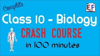 Class 10 Biology Revision in 100 minutes