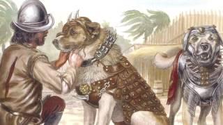por qué los españoles usaban perros para  conquista