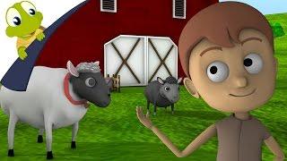Baa baa black sheep 3D Nursery Rhyme