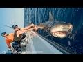 Shark Fishing With New York Mets Pitchers Steven Matz Sean Gilmartin