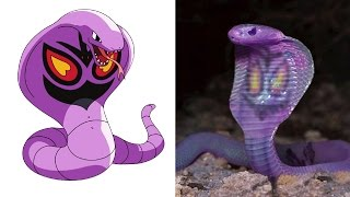 13 Pokemon That Actually Exist In Real Life