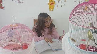 Okul Ödevimizi Yapıyoruz Sizlerle Hafta Sonu Pazar Sohbeti