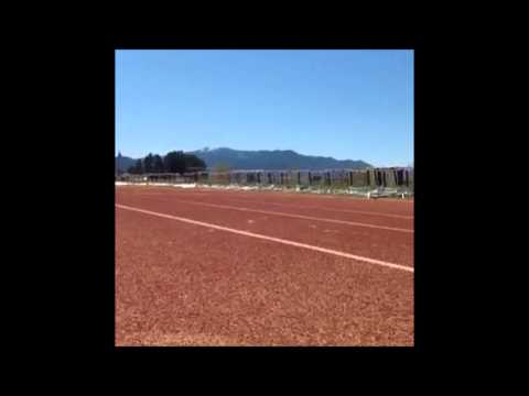 Dog Breaks Usain Bolts 100m WR (8.86)