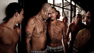 MS-13: The Homegrown Gang Trump Wants to Deport   NYT