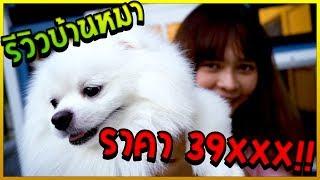 พี่ขวัญพาดูบ้านหมาฟูจิ ราคา 39,XXX บาท
