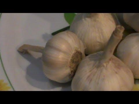 Cara Menghilangkan Bekas Luka Lama dengan Bawang Putih [Manfaat Bawang Putih]