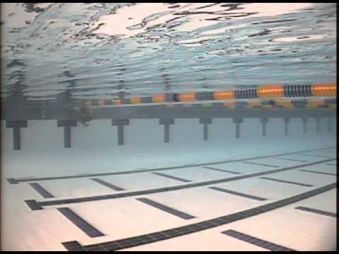 Xxx Mp4 Chantel Wynn Breast Side View Underwater 3gp Sex