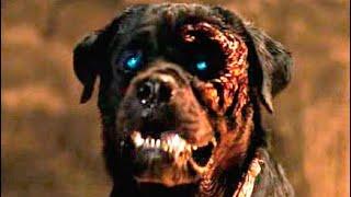 Rottweiler (Trailer español)