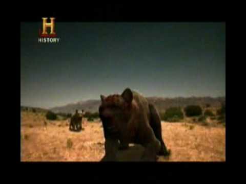 Mundo Jurásico Bestias de la era de hielo Parte 6 de 6