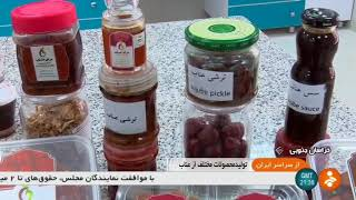 Iran Jujube products project, South Khorasan Jahad university عناب جهاد دانشگاهي خراسان جنوبي