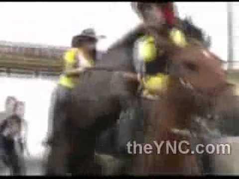 Xxx Mp4 الحصان هاج على البنت 18 3gp Sex