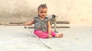 Monkey Playing With Child (Rajiv Pandey)