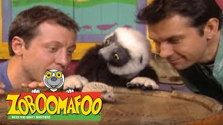 Zoboomafoo 210 - Families Game (Full Episode)
