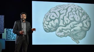 How your brain decides what is beautiful | Anjan Chatterjee