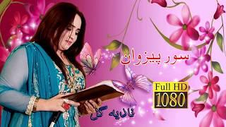 Nadia Gul New Live Song Sor Pezwan 2018