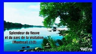 Splendeur du fleuve et du parc de la visitation (1/2)