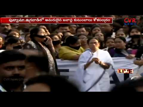 Xxx Mp4 Chief Minister Of West Bengal Mamata Banerjee Protest Rally Over Pulwama Attack L CVR NEWS 3gp Sex