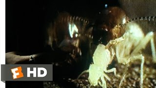 Mimic (1/9) Movie CLIP - Entomology 101 (1997) HD