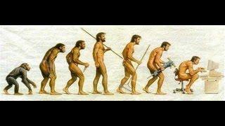Játék evolúció