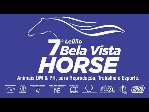 Xxx Mp4 7º Leilão Bela Vista Horse 47ª Expobel Bela Vista MS 3gp Sex